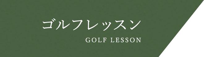 その他のゴルフレッスン